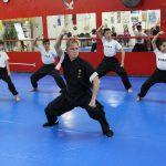 Kung Fu infantil - Treino de formas e postura